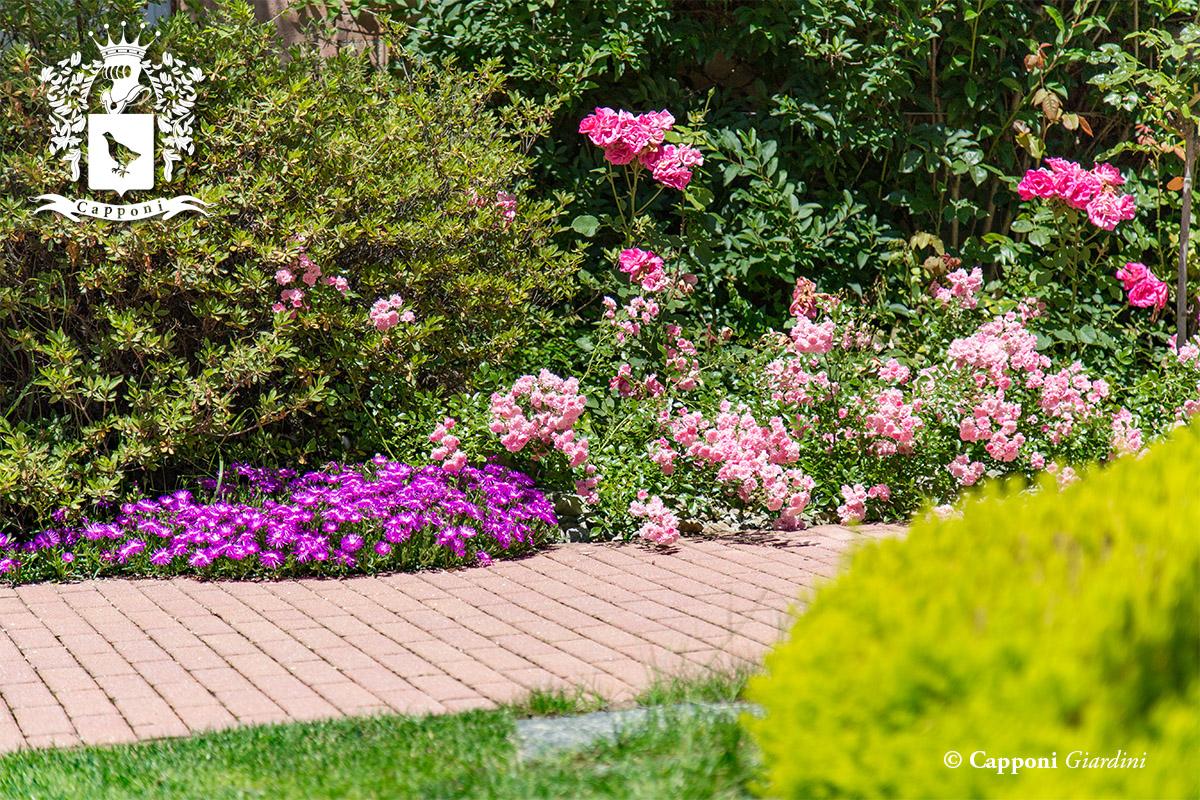 Gallery giardini with aiuole giardini for Rinfoltire il prato